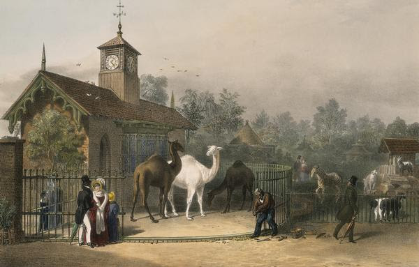 File:View of the Zoological Gardens1835.jpg