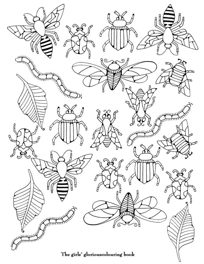 56 Dibujos De Insectos Para Colorear Oh Kids Page 3