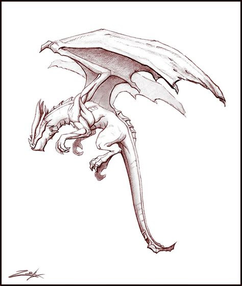 dragon sketch  zoriy  deviantart
