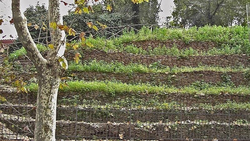 jarak yang cukup akrab dari tepi  timur Sungai Tiber Timbunan Sampah Tertua di Dunia