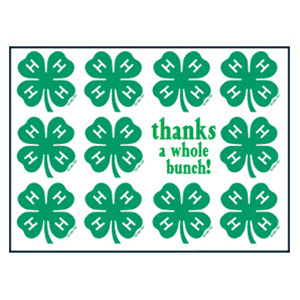 1000+ images about Thank you cards on Pinterest | 4 h, Cove and ...