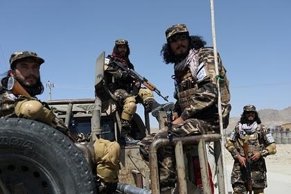 Талибы заявили о готовности объявить состав нового правительства Афганистана