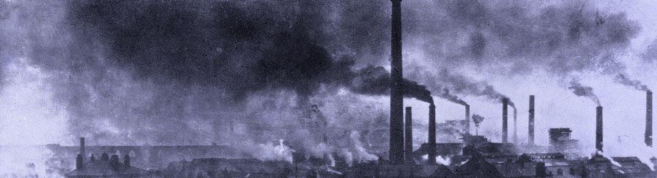 Risultati immagini per Inquinamento e distruzione dell'habitat