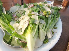Lettuce Parmesan Salad