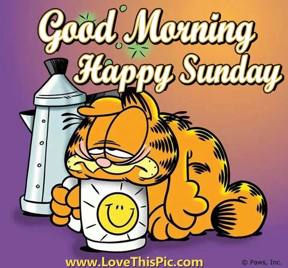 Garfield Good Morning Sunday Quote Pictures Photos And Images For