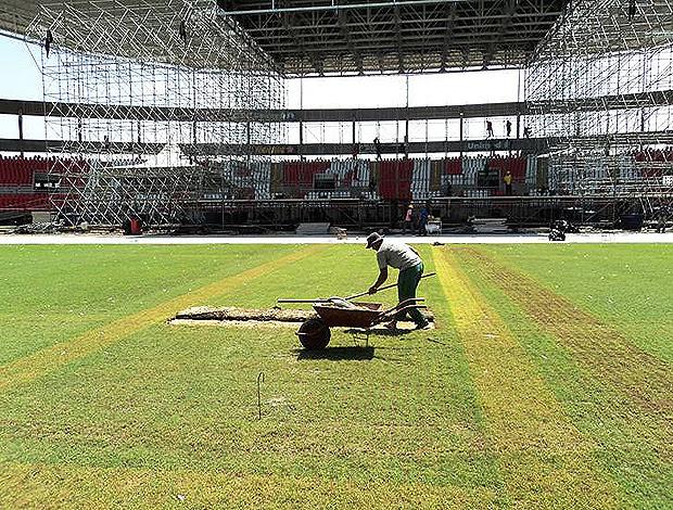 gramado engenhão (Foto: Divulgação/ Site Oficial Botafogo)
