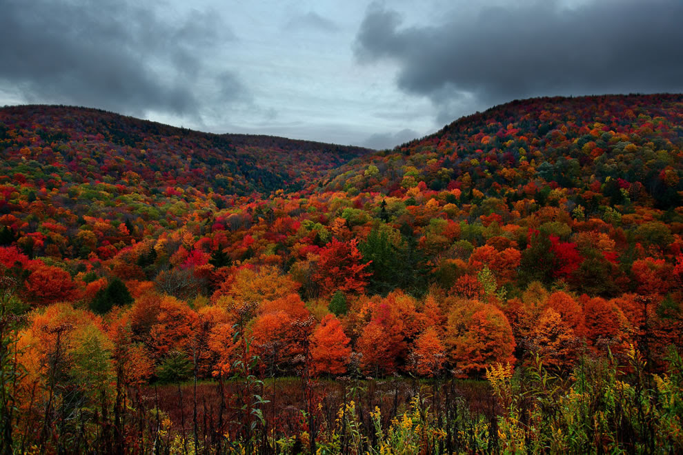 Autumn mountain peak foliage colors, West Virginia