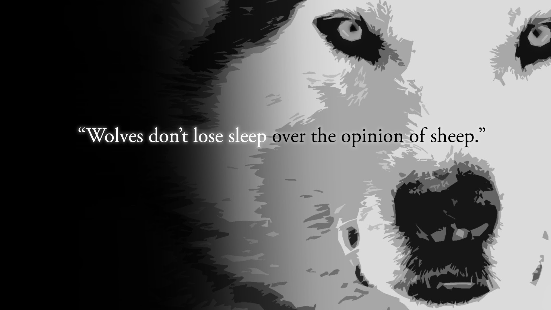 Wolves Dont Lose Sleep Over The Opinion Of Sheep 1920x1080