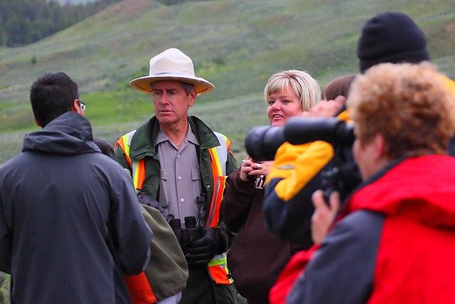 IMG_3293 Bear Rush, Yellowstone National Park