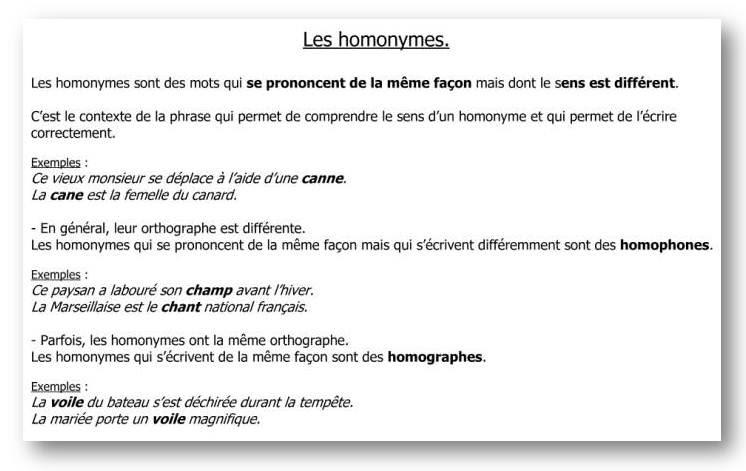 Homonimy - teoria 6 - Francuski przy kawie