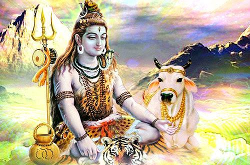 Shiv Shankar God Images And Wallpapers Shiva Wallpapers