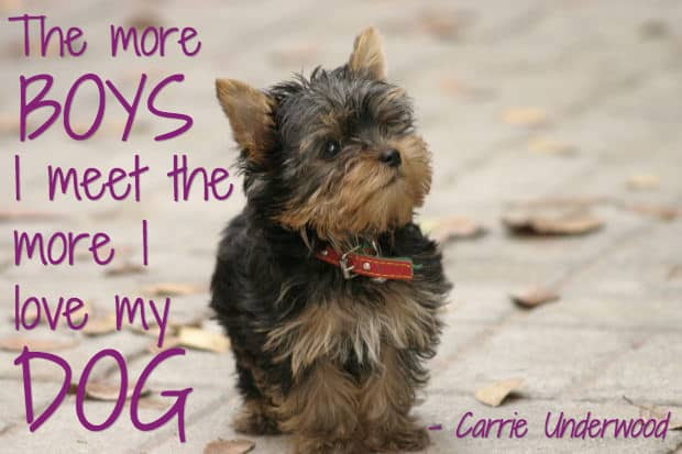 25 Dog Quotes (With Pictures!)
