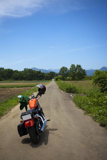 Harley Davidson XL 883R 075