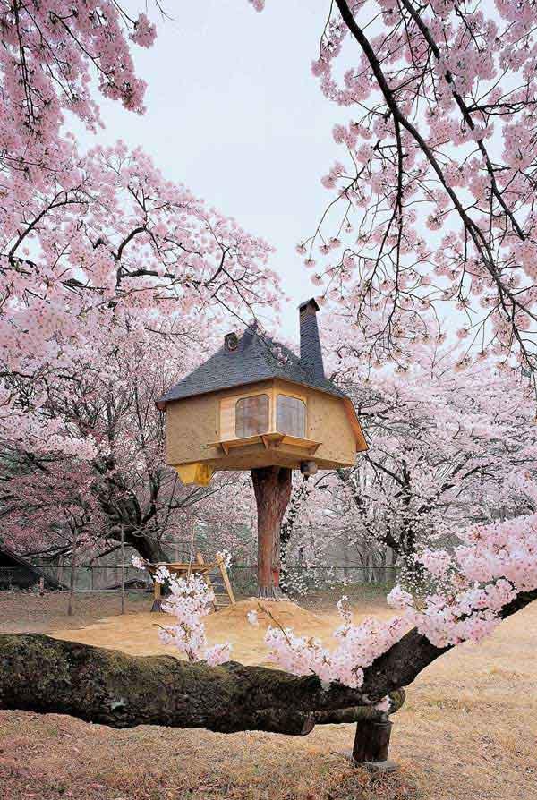 amazing-treehouses-17