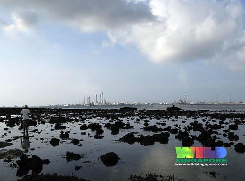 Emissions over Cyrene