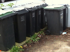 The bin farm - they all fitted fine before