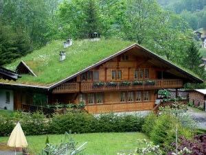 telhado-verde7