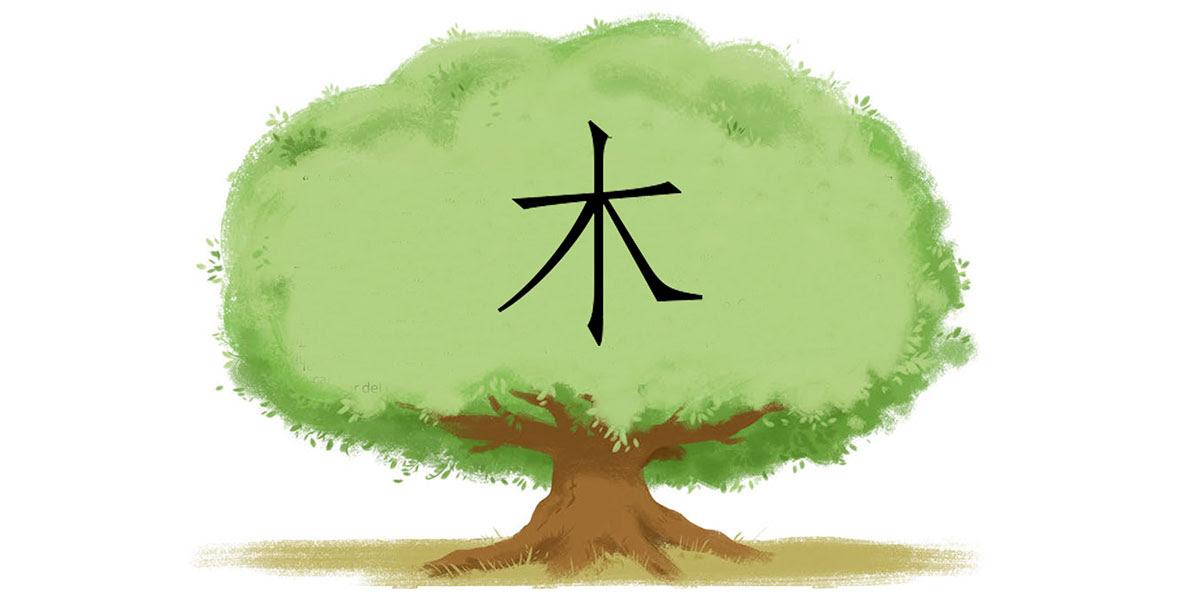 Formación De Los Caracteres De árbol 木 Shuowen Jiezi Xii