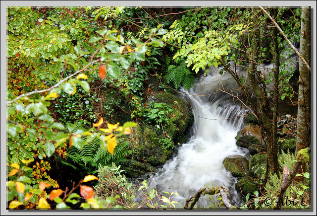 1 río Urbión