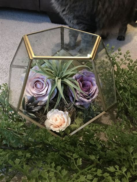 Best 25  Terrarium wedding ideas on Pinterest   Terrarium