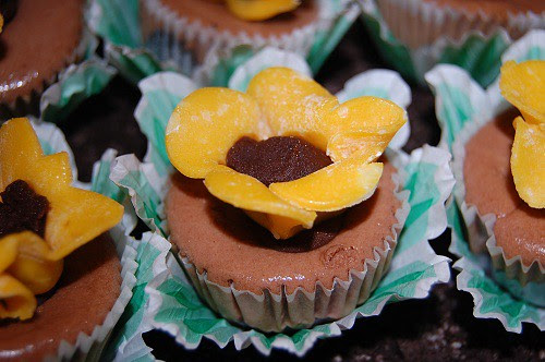 Susie's Chocolate Cheesecake Cupcakes