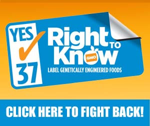 Right to Know GMO Prop 37