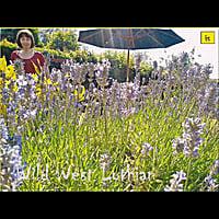 Wild West Lothian