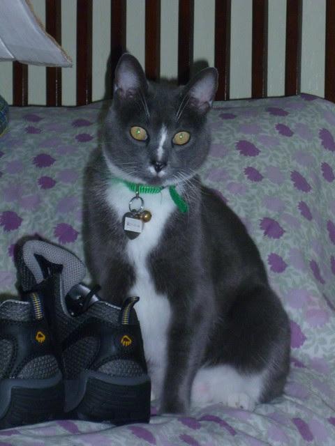 Emma & shoes