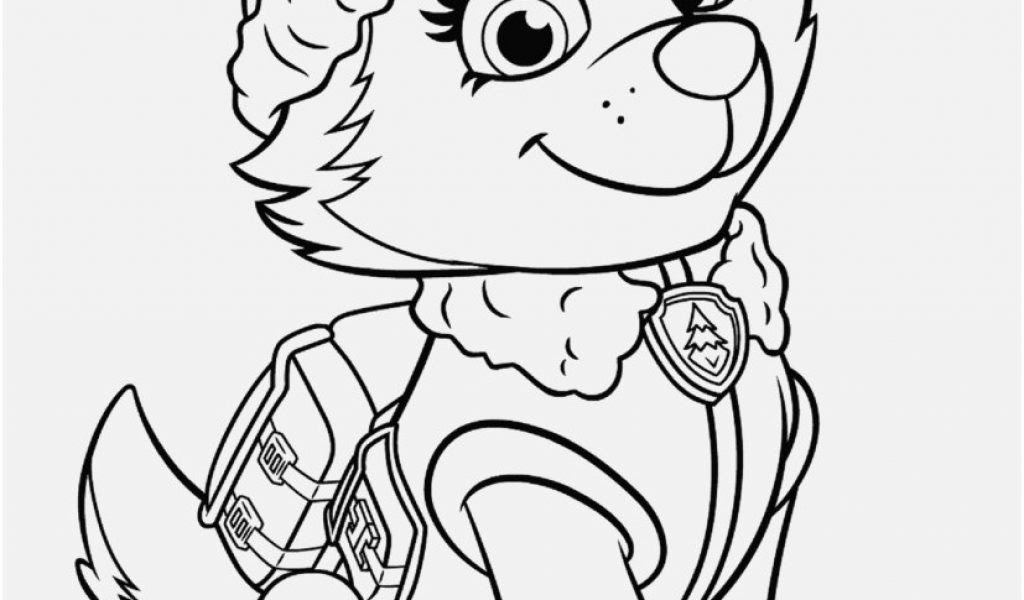 Paw Patrol Skye And Everest Coloring Pages - Wallpapers HD ...