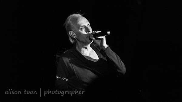 Peter Murphy, Stripped