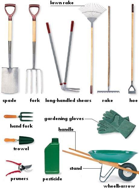Garden group gathering garden tools with names and usages for Gardening tools 4 letters