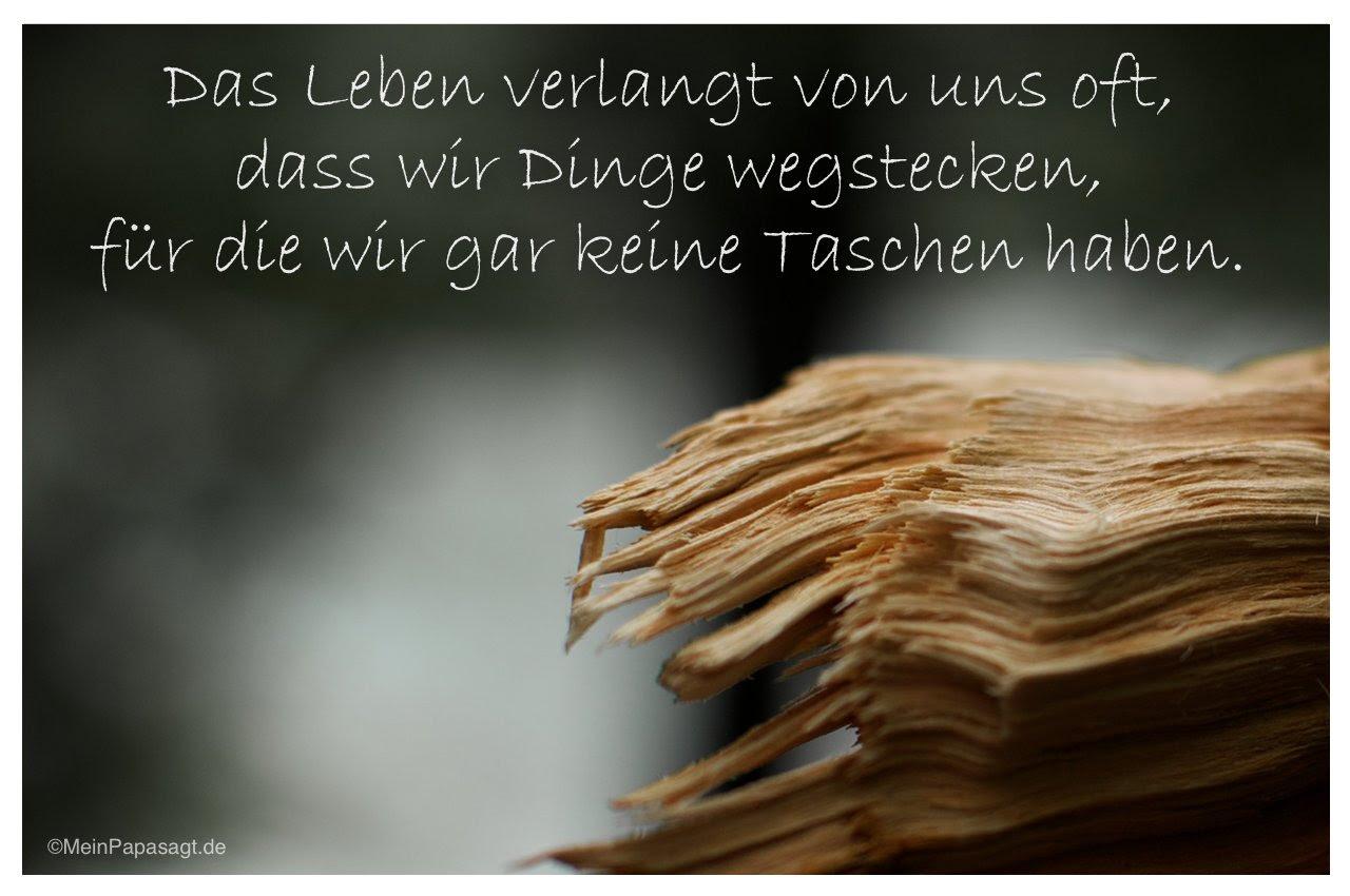 Schön Sprüche Lebensweisheiten Galerie Von Abgebrochener Baumstamm Mit Dem Spruch: Das Leben