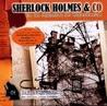 Sherlock Holmes & Co Hörspiele: Das Geisterhaus