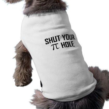 Shut Your Pi Hole Shirt