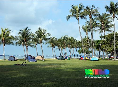 Camping at East Coast Park