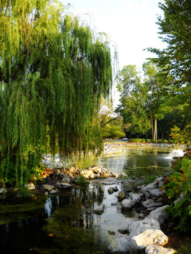 Serene park by niseag03