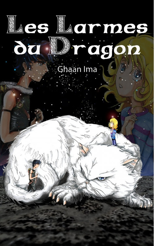 Couverture Les larmes du dragon