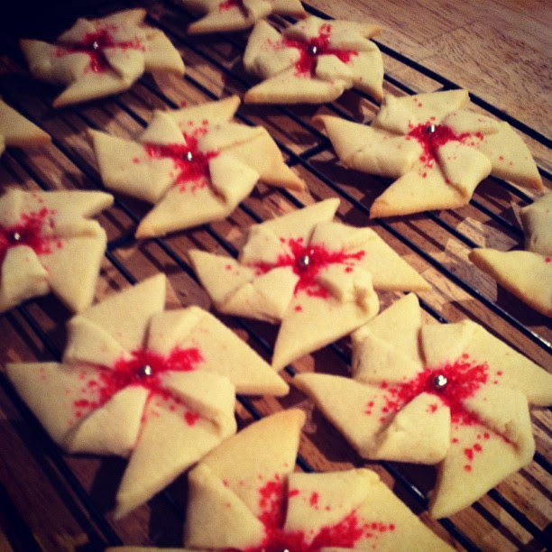 poinsettia cookie