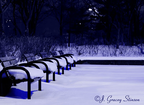 Park benches shrouded in a covering of snow in a corner of the Port of Orillia