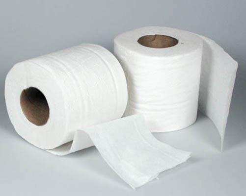 Image result for Diez cosas que no sabías acerca del papel higiénico