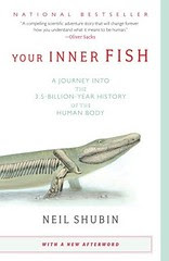 inner fish