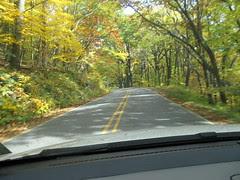 Leafer Trip 3
