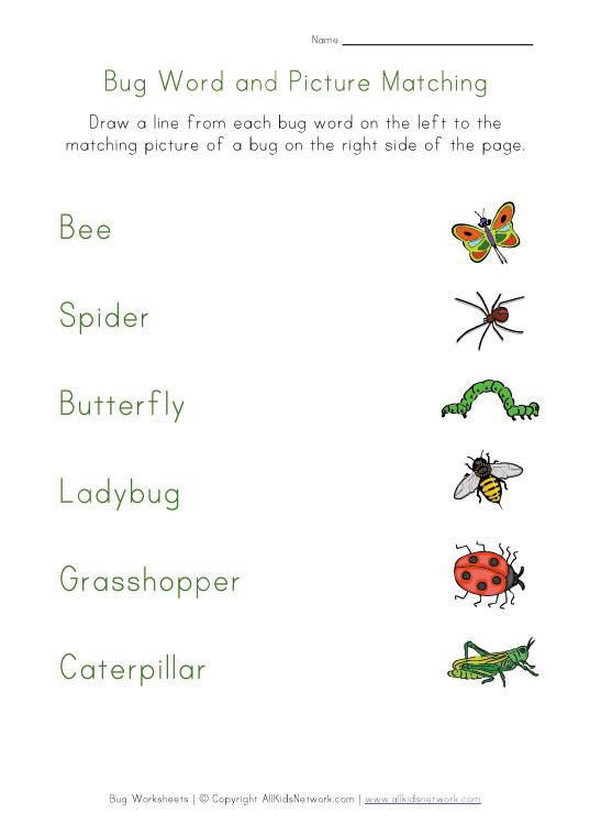 word recognition worksheet animals