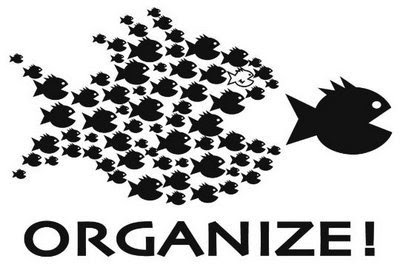 Image result for Organize