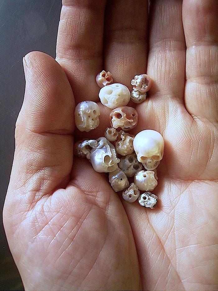 carved-pearl-skulls-vanitas-shinji-nakaba-32