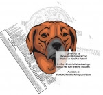 Rhodesian Ridgeback Dog Intarsia - Yard Art Woodworking Pattern - fee plans from WoodworkersWorkshop® Online Store - Rhodesian Ridgeback Dogs,pets,animals,dogs,breeds,instarsia,yard art,painting wood crafts,scrollsawing patterns,drawings,plywood,plywoodworking plans,woodworkers projects,workshop blueprints