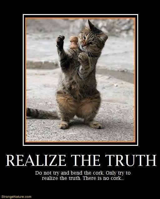 Realize The Truth Funny Animal Quote Quotespicturescom