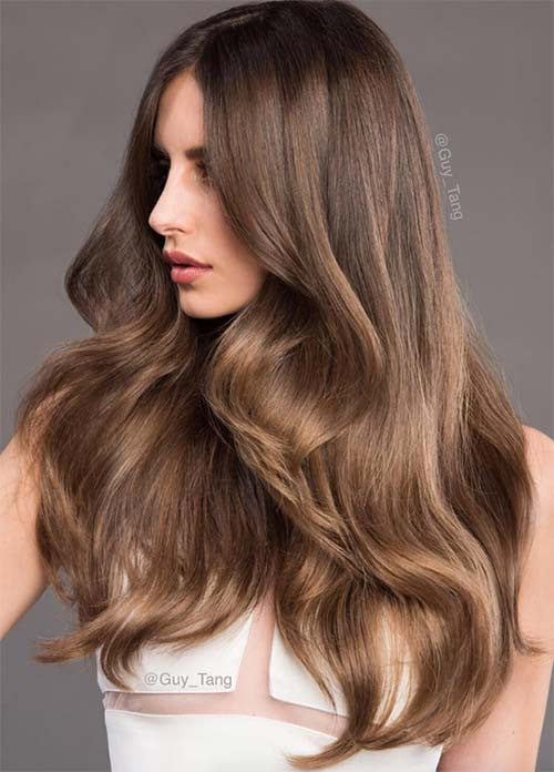 100 Dark Hair Colors: Black, Brown, Red, Dark Blonde Shades  Fashionisers\u00a9