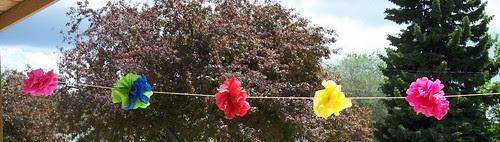 tissue flower banner