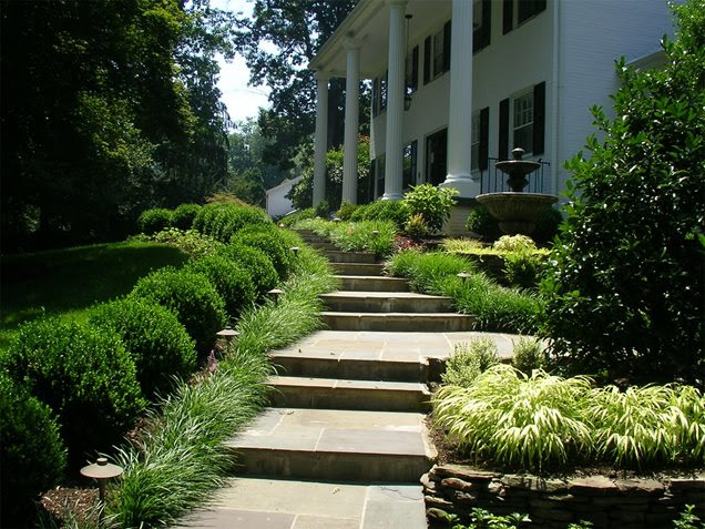 Front Yard Landscape Boxwood Ideas For Small Yards